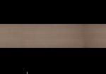 Teflon Bandelette - 1 Mètre (22mm)