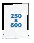 100 sacs gaufrés 250 X 600 mm